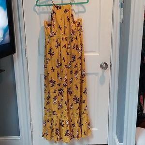 NWT Francesca's Floral Maxi Dress
